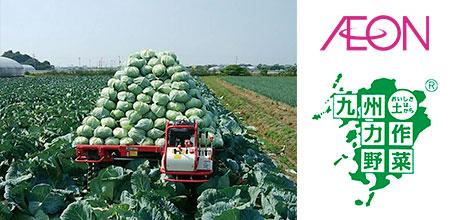 九州力作野菜