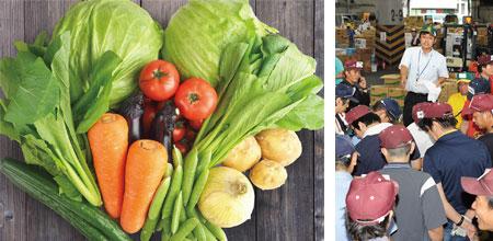 野菜と競り